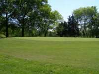 Golf Course Turf